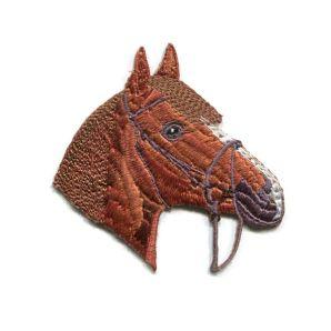 Aufbügler Großes Pferd