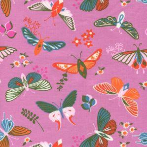 Flutter - Merry