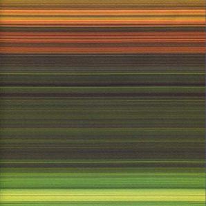 Softshell Stripes - Grün/Orange