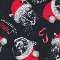 Jersey Kitty Christmas
